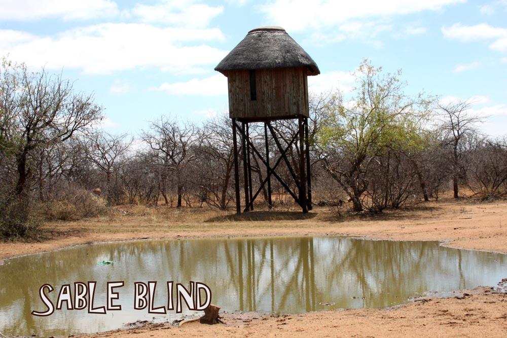 A Bow hunting Blind in South Africa at Bushmen Safaris