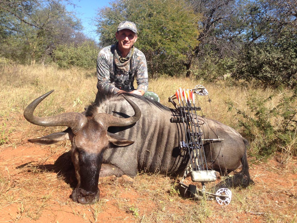 Bow hunting Blue Wildebeest in South Africa at Bushmen Safaris