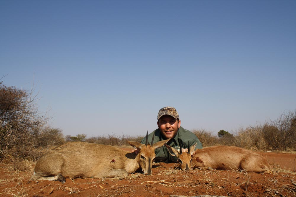 Bow hunting Grey Duiker in South Africa at Bushmen Safaris